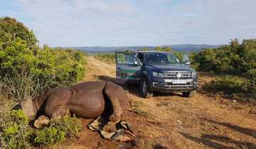 Volkswagen Commercial Vehicles Supports Fight Against Rhino Poaching (1)